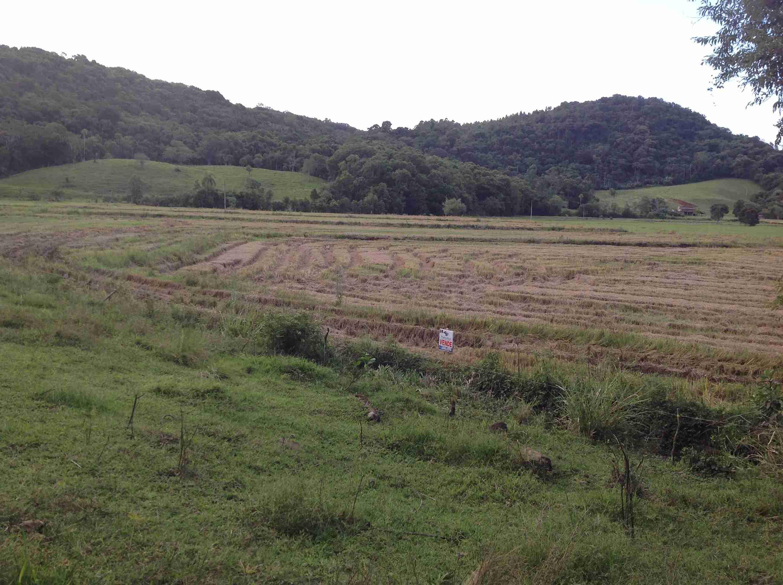 Terreno rural (038) 4,5 há,parte c/ pro várzea sendo explorado,ótima localização p/sítio c/ nascente de água,mata nativa,pastagem,passagem de água frente e fundo da pro várzea