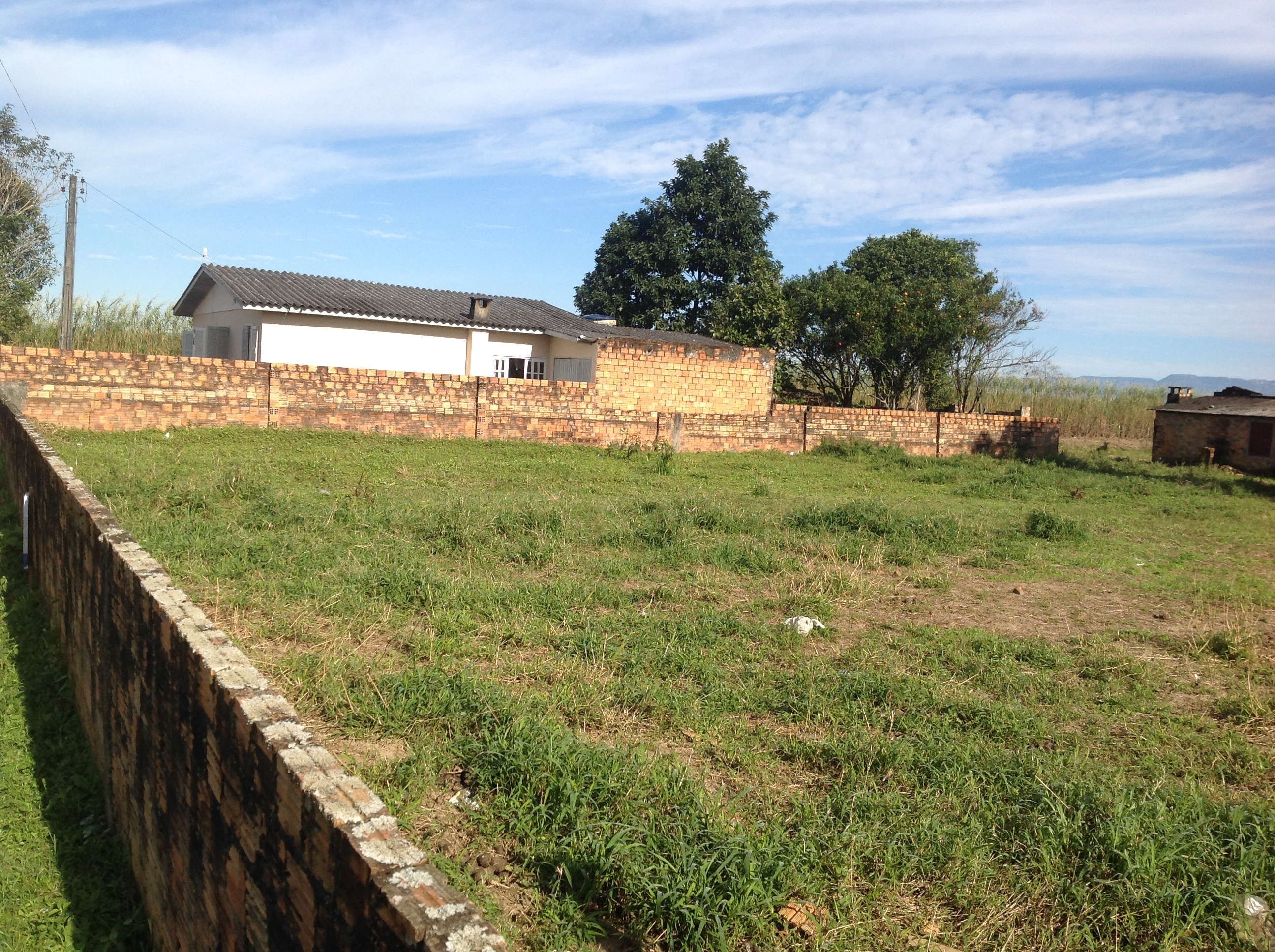 Lote (107)