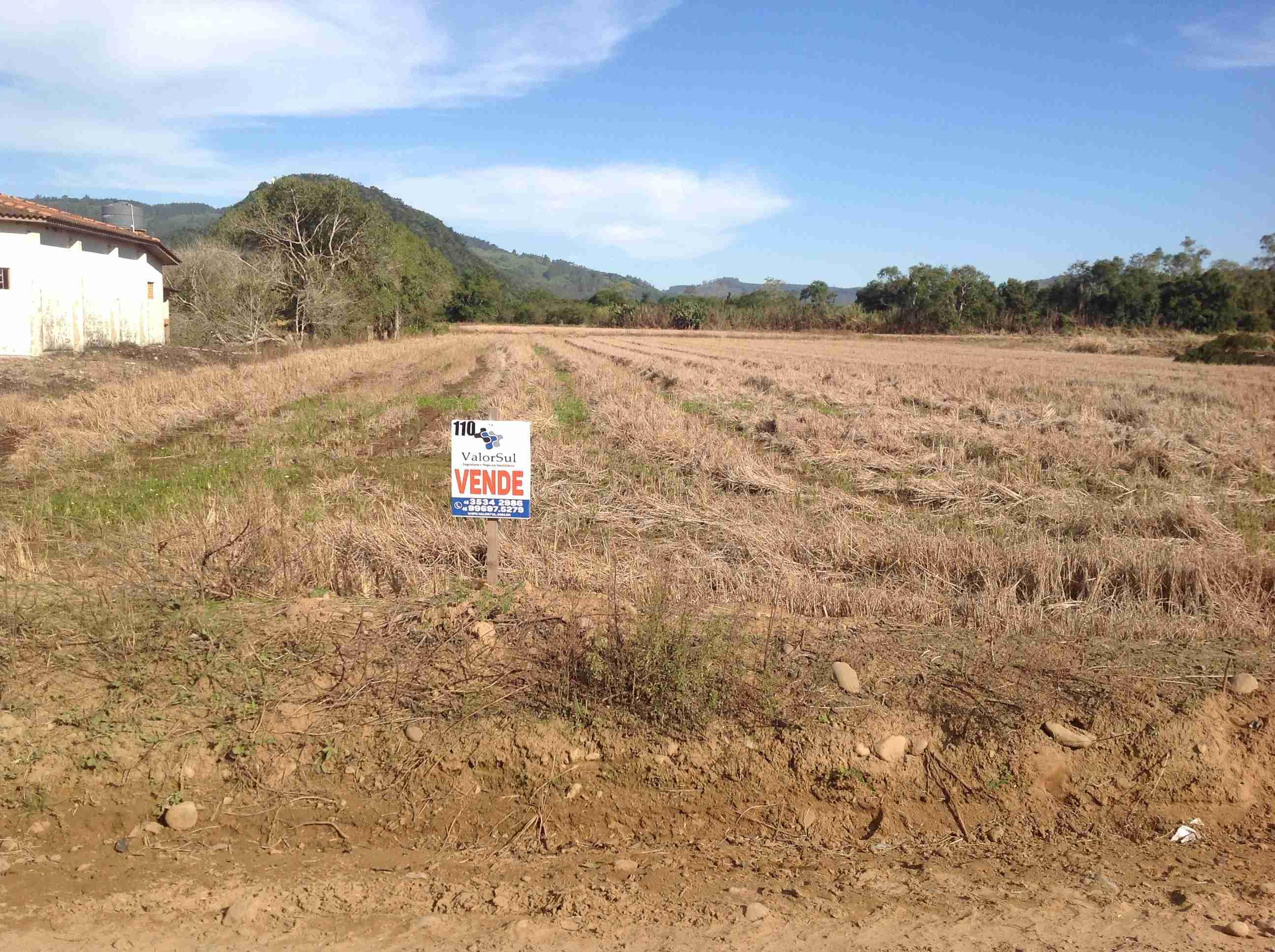Área rural (110)2.5ha,preparada cultura arroz c/ provarzea pronta,ótima localização,estrada municípal cortando ao meio,próximo município séde.