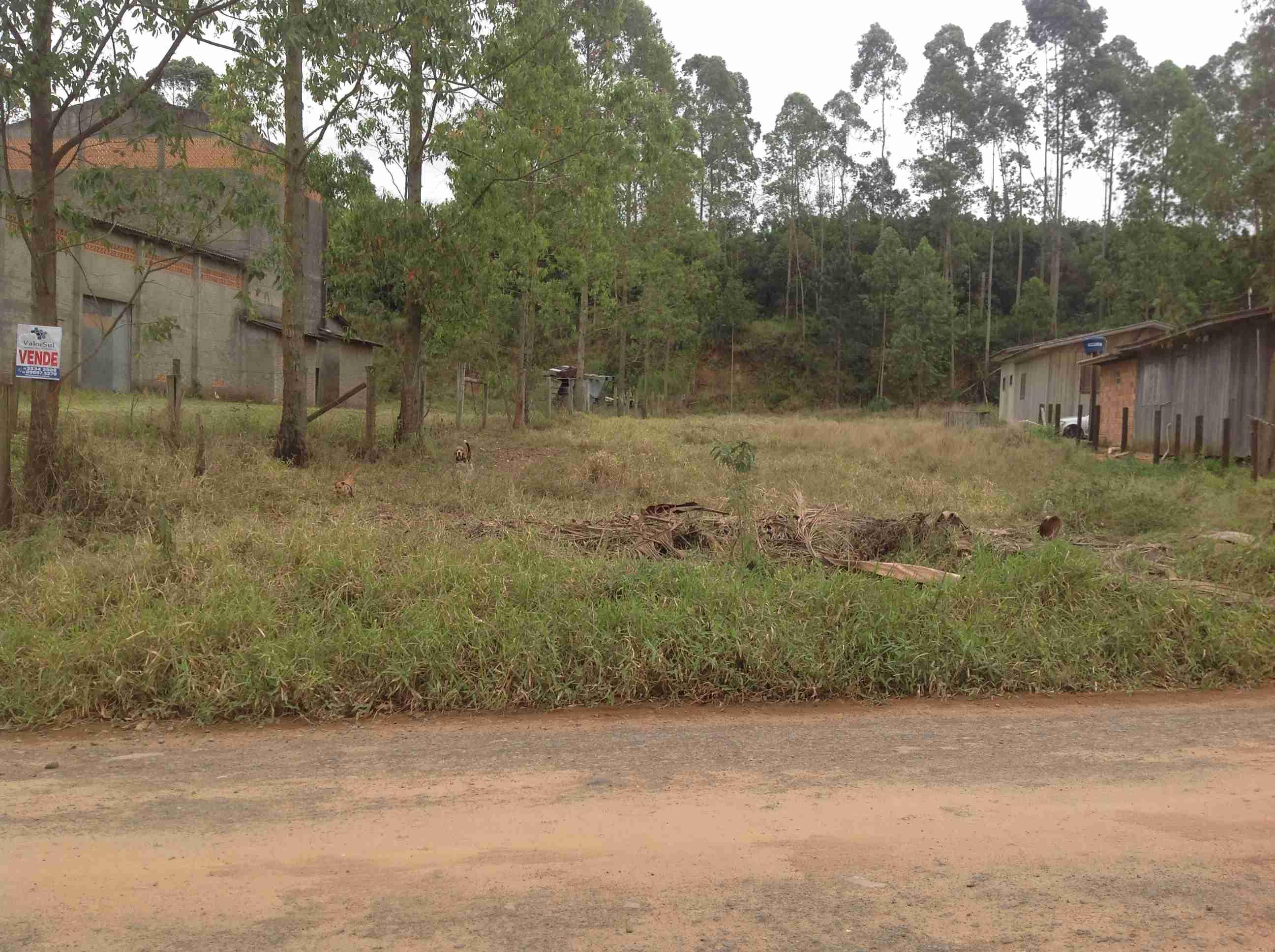 Imóvel (117) Lote 16×60: 960 m2 estrada geral Vila Bitencourt